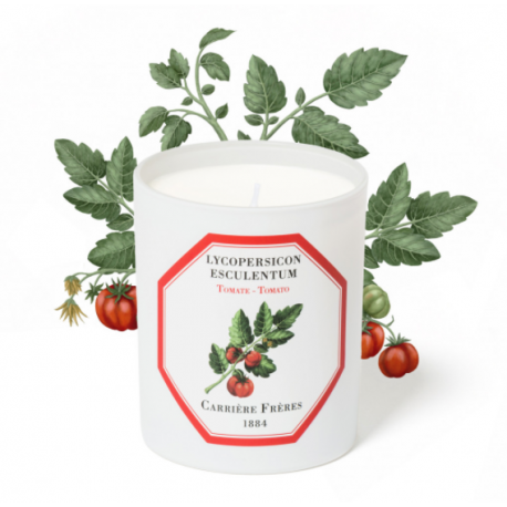 TOMATO candle -...