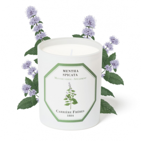 GREEN MINT candle - MENTHA...